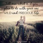 life plan marriage